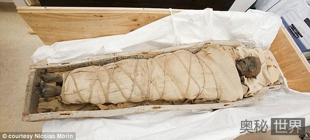 埃及发现3000年前女歌手木乃伊