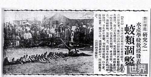 1934年营口坠龙事件真相
