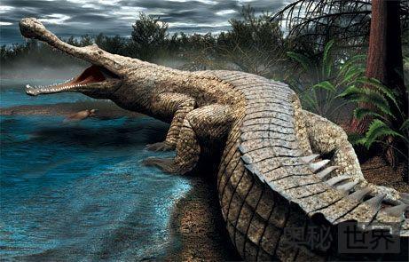 帝鳄:连恐龙都惧怕的生物