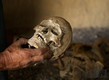 可追溯到600年前的人类遗骨