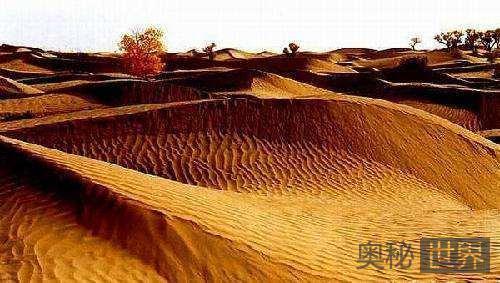 塔克拉玛干沙漠发现古铜观音佛像