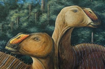 Gryposaurus monumentensis:植物粗齿锯