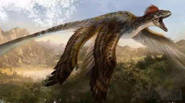 北票龙:长羽毛的恐龙