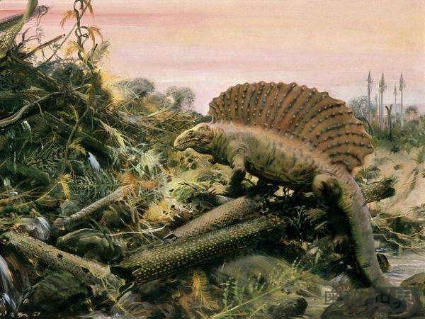 二叠纪生物大灭绝持续几十万年