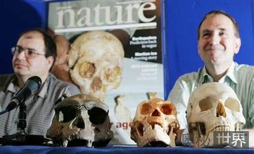 """印尼""""霍比特人""""骨骼化石"""