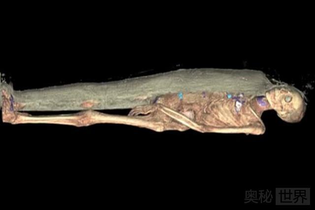 CT扫描还原3000年前木乃伊制作过程