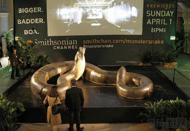 远古生物大复活泰坦蟒再现