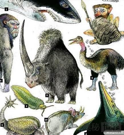 盘点远古十大灭绝物种
