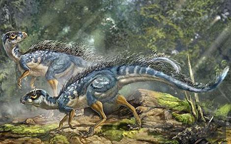 有羽毛的食草恐龙