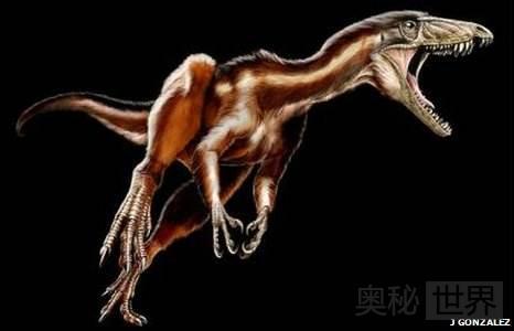 美国发现2.15亿年前新种霸王龙