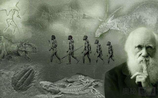 人类祖先直立行走是因为温度太高
