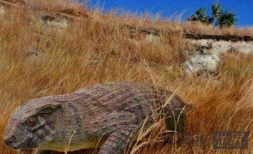 以食草为生的史前迷你鳄鱼