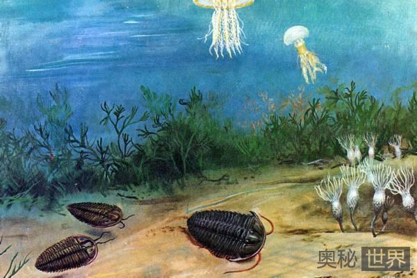 生命起源于地球吗