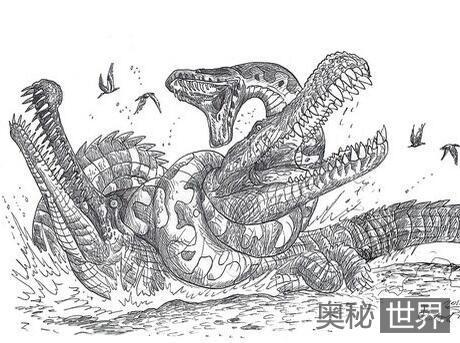 可以生吞鳄鱼的泰坦蟒为什么灭绝?