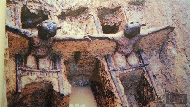 马王堆汉墓中曾发现古怪生物