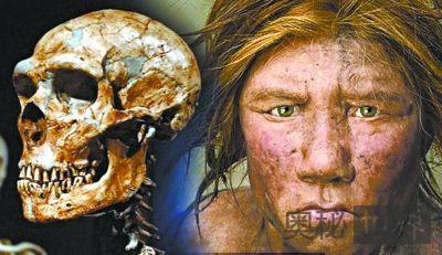 尼安德特人为何灭绝?也许和他们的大脑结构有关