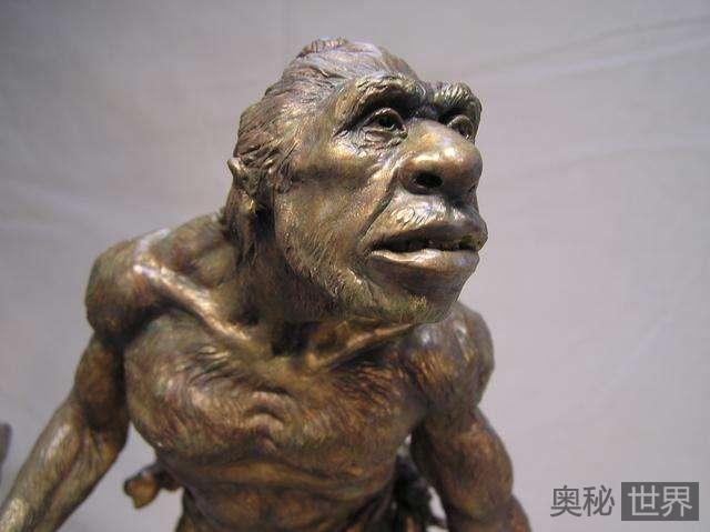 """""""大鼻子""""成为尼安德特人最大强项,12万年内竟无人超越"""