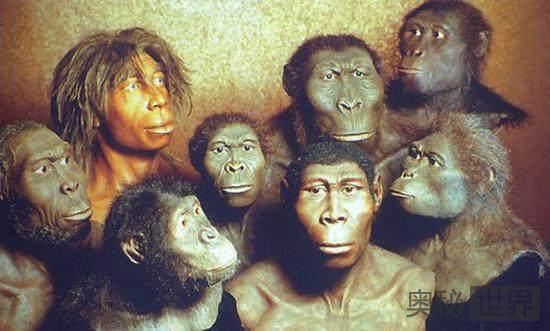 从能人到智人到现代人,地球上曾经生活了多少种人类