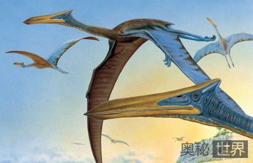 翼龙飞行生理构造之谜
