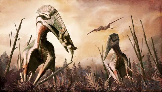 凶猛的巨大翼龙竟然以恐龙为食