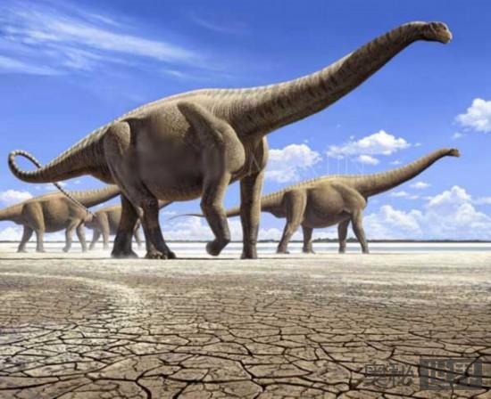 易碎双腔龙(已知的最大恐龙)