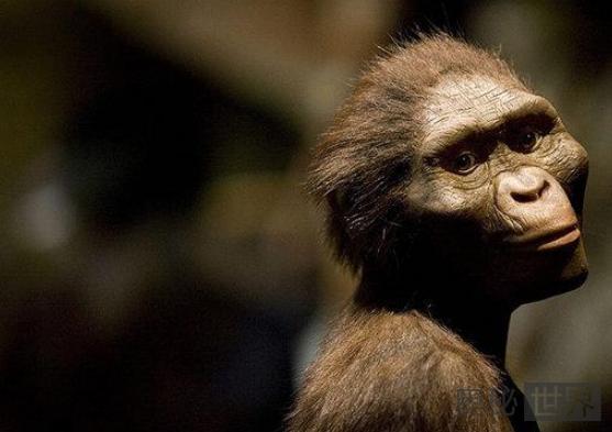 地球上原本没有人,那么第一个人类是怎么来的?
