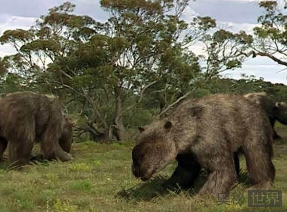 双门齿兽灭绝的原因是什么?