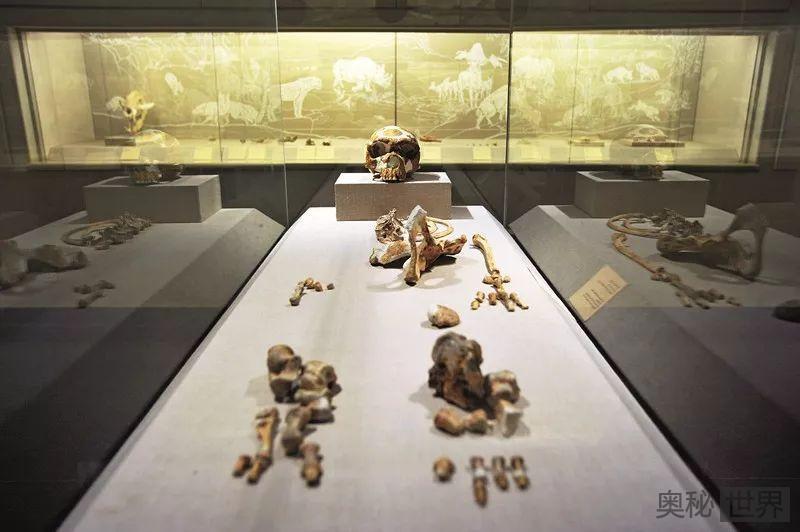 中国考古学的特色与风格