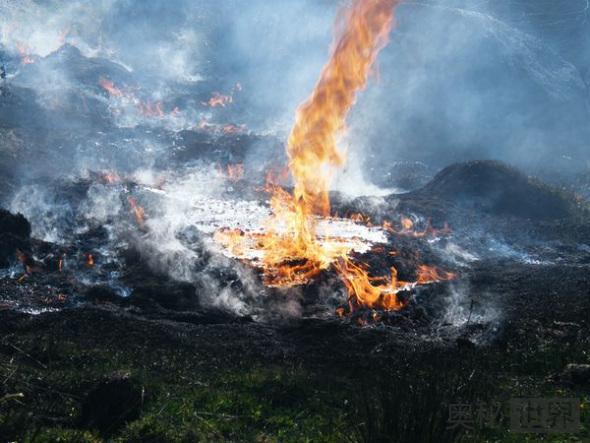 2008年英国泥煤中升起的火旋风