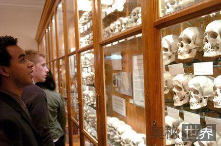 美国费城马特博物馆