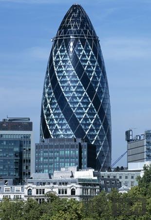伦敦小黃瓜