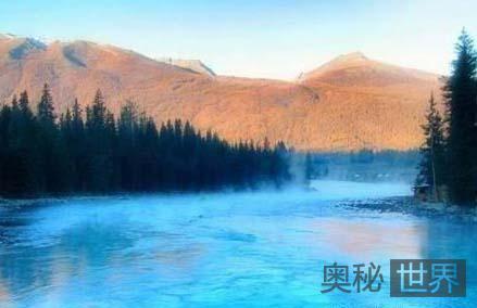 高原密林的故事:新疆哈巴河