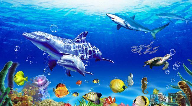 海水和海底谁更古老
