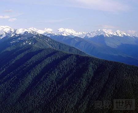 梅黛奥拉众神曾经居住在奥林匹斯山