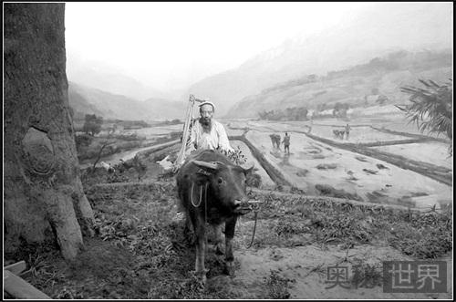 中国农耕定居的文化历史