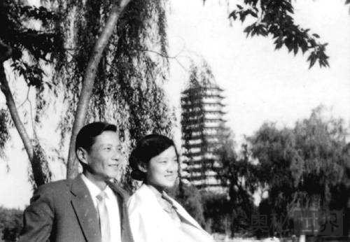 毛泽东斥责章含之为什么不离婚