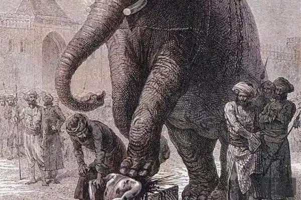 人类历史上千奇百怪的动物刽子手