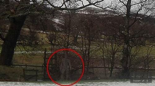 英国男子意外拍到鬼魂专家证实并非作伪