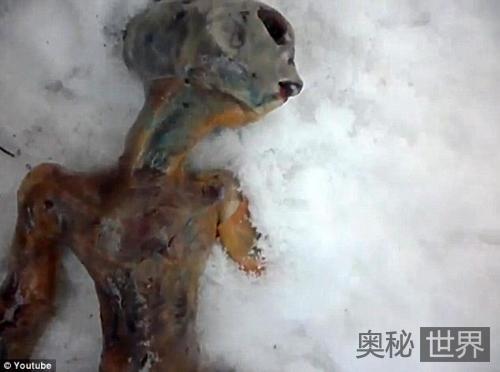 俄罗斯发现酷似ET的外星人尸体