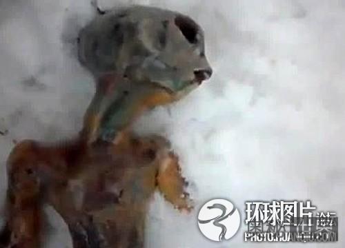 俄网民上传冰冻外星人视频