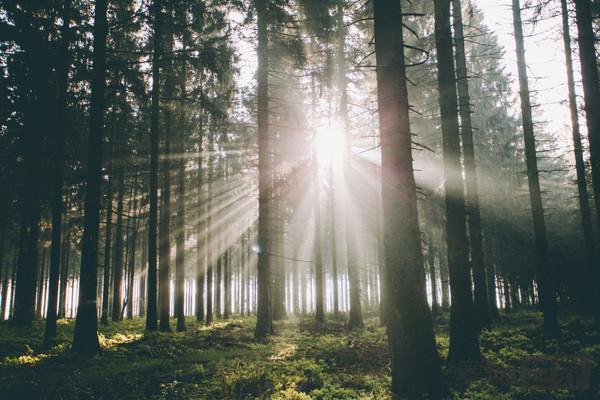 如果光线可以一直传播,为什么宇宙是黑暗的