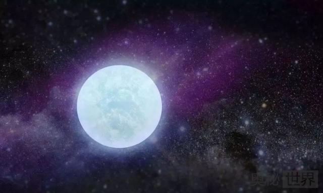 白矮星是由什么构成的?