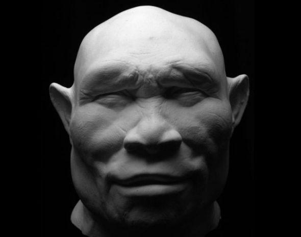 直立人(Homo erectus)生活在100万年前。一种理论认为,直立人起源于非洲,后迁移到印度、中国和爪哇。另一种理论认为,他们起源于亚洲,后迁移到非洲