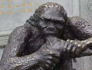 巫山人:中国最早的人类