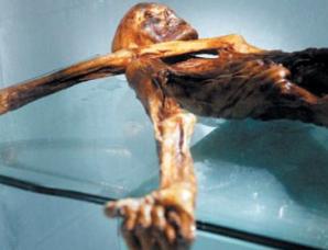 最古老木乃伊冰人奥兹随身物品来自不同时空