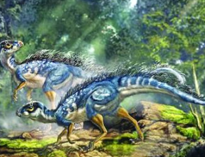 辽宁发现孔子天宇龙化石