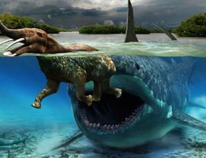 若邓氏鱼活到现在,它会取代虎鲸成为海洋霸主吗?