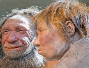 我们身体中的尼安德特人基因给我们带来了什么影响?