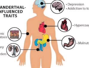 尼安德特人DNA对人类特征有微妙但重要的影响