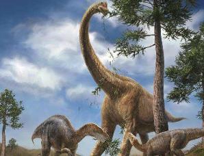 腕龙是曾经生活在陆地上的最大的动物之一